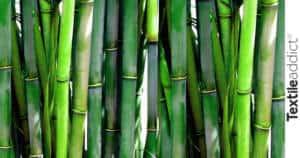 bambou fibre_TextileAddict