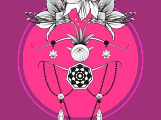 Amarylllis-rose