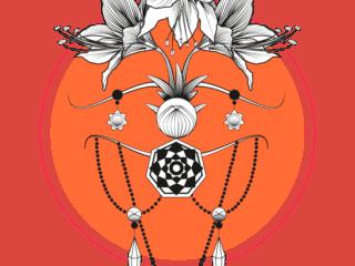Amarylllis-rouge